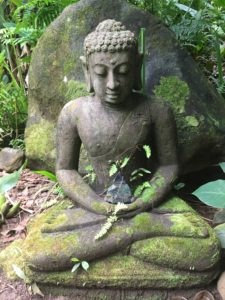 Buddha, compassion, Ayurveda, happinehealth, alternative health